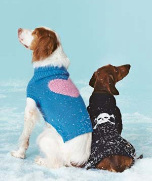 0312dogs-sweaters-snow