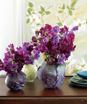 Sweet peas in cabbage flower arrangement - Landscape