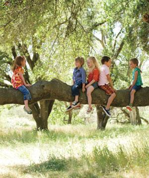 Kids in tree