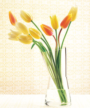 Variation vase with tulips designed by Willem Noyons