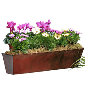 Galvanized window box
