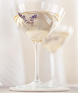 """Stay Dry"" Vodka Martini"