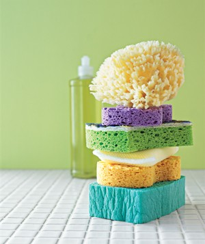 Sponges stacked