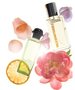 Soft and floral fragrances