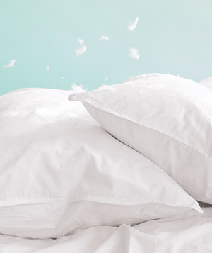14 fun things to do on a rainy day real simple feather pillows solutioingenieria Image collections