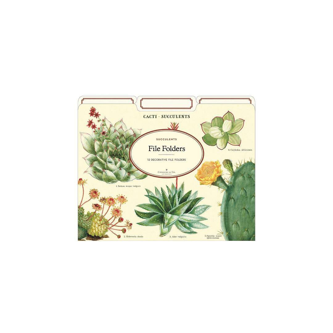 Succulents File Folders