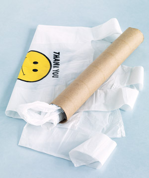 Paper-towel tube to hold plastic bags