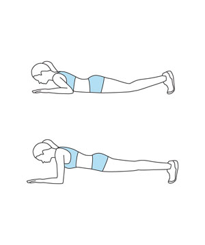 Illustration of the Front Plank exercise