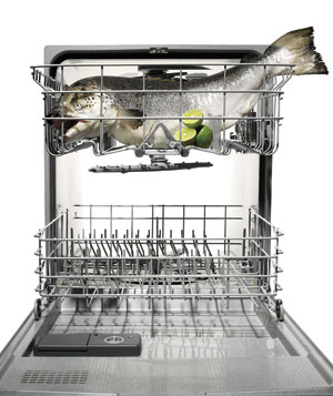 Bob blumer 39 s dishwasher salmon real simple for Cooking fish in dishwasher