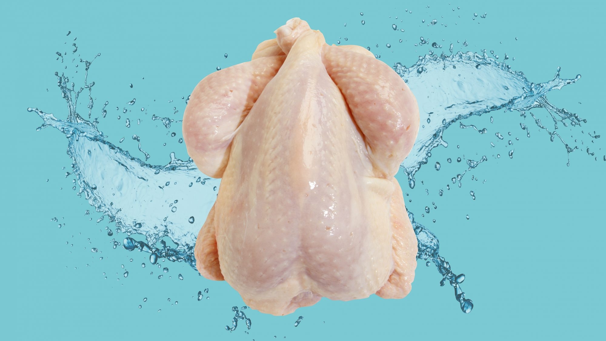 raw chicken on watery background
