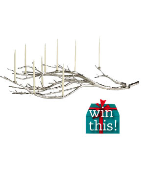 Manzanita Branch Candelabrum by West Elm