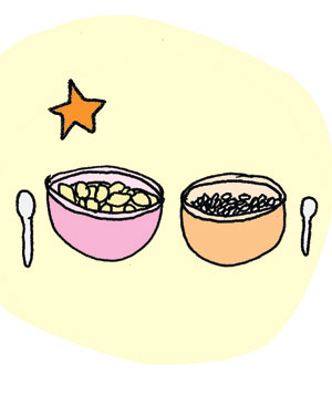 Illustration of puffed rice cereal or raisin bran