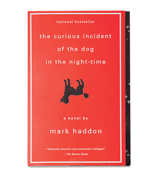 """The Curious Incident of the Dog in the Night-time"" novel by Mark Haddon"