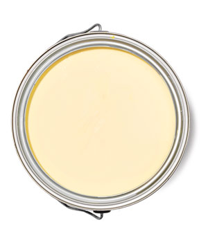 Benjamin Moore Moonlight Natura paint