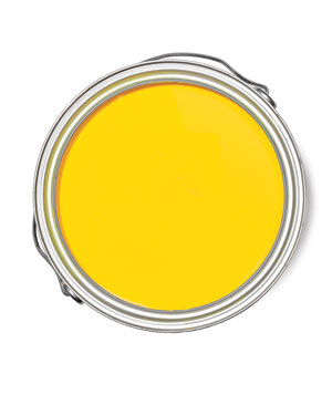 Benjamin Moore Bright Yellow Natura paint