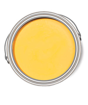 Benjamin Moore Yellow Raincoat Natura paint