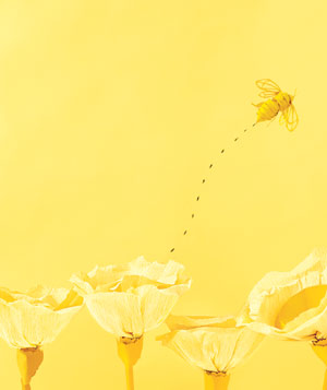 Paper construction of yellow flowers and bee by Matthew Sporzynski