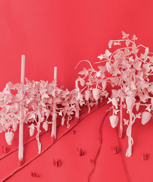 Paper construction of Napa Valley by Matthew Sporzynski