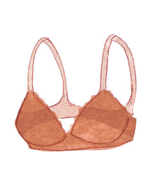 Illustration of a bra
