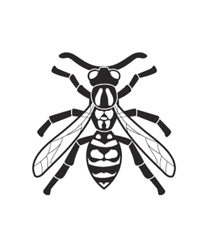 Illustration of wasp