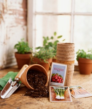 Gardening supplies and seeds