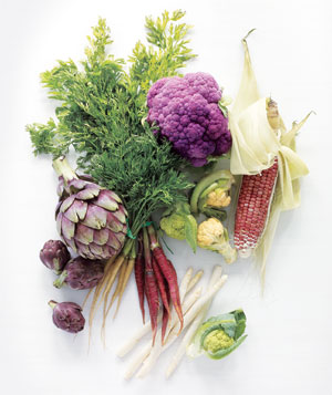 month-by-month-vegetable-gardening-guide