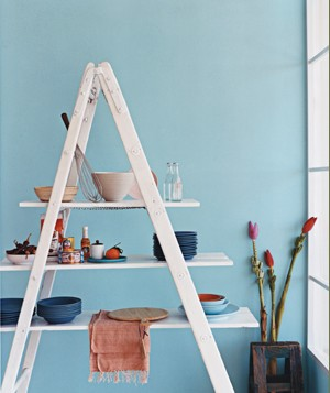 create-kitchen-shelving-from-ladder