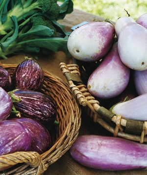 Basket of Eggplants