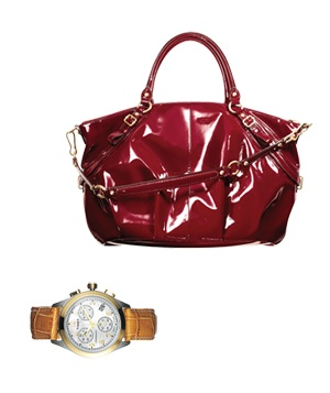 Red Purse and watch
