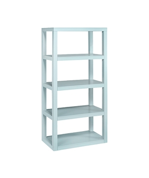 Parsons shelf