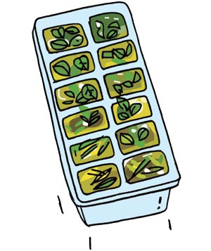 Illustration of frozen herb cubes