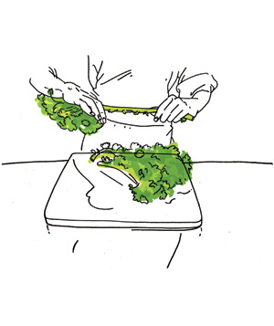 Illustration of prepping hearty greens