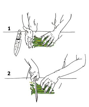 Illustration of woman trimming green beans
