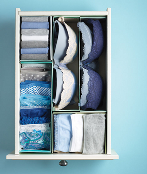 cheap-organizing-ideas