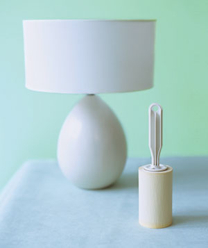 Lamp and lint roller