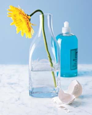 Eggshells as Bottle and Vase Cleaners