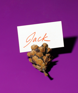 Pine Cone as Place Card