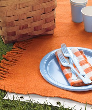 Shower Curtain as Picnic Blanket Liner