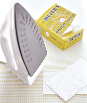 Dryer sheets with an iron