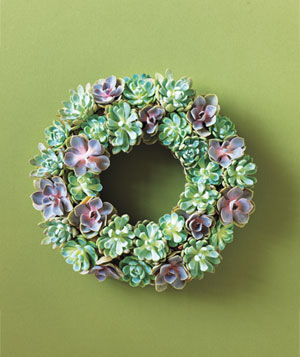 Circle of Succulents Wreath