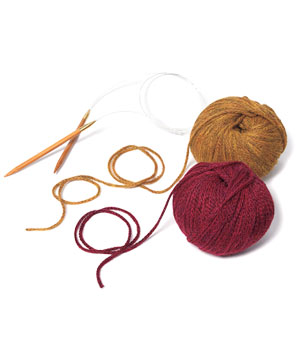Jimmy Beans Wool Scarf Kit