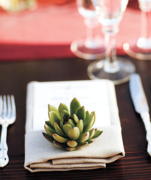 Wedding place setting with succulent