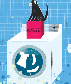 Dog sitting on washing machine illustration