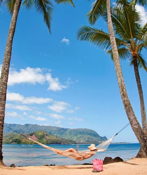 Woman with a laptop in a hammock between palm trees on a beach