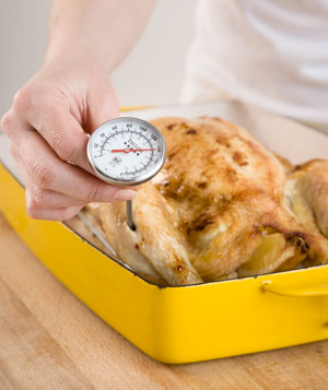 Hand holding thermometer in cooked whole chicken in roasting pan