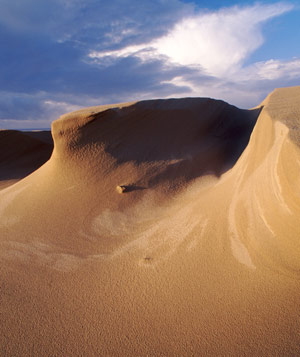Sand dunes in Oregon