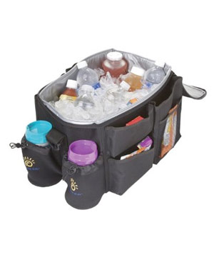 Sunshine Kids Organizer and Cooler Bag