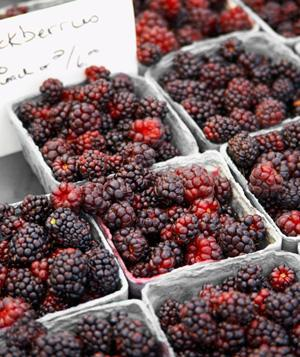 Cartons of blackberries