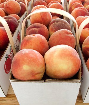 Baskets of fresh peaches