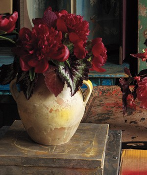 Lush bouquet of red peonies in a clay vase with a distressed, rustic background